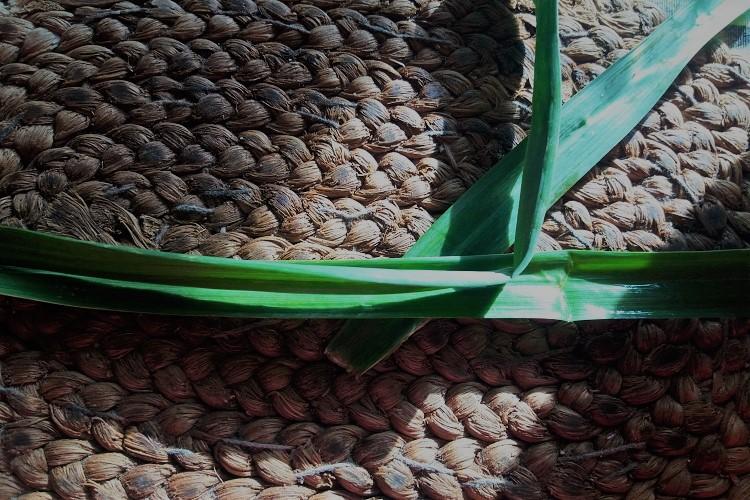 stacca r'egghie - foglia d'aglio. ammacucenà
