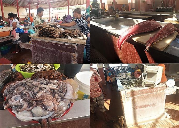 capo verde mercato del pesce di mindelo - amma cucenà